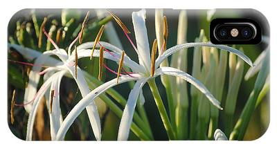 IPhone Case featuring the photograph Early Morning Lily by LeeAnn Kendall