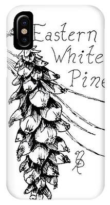 Eastern White Pine Cone On A Branch IPhone Case