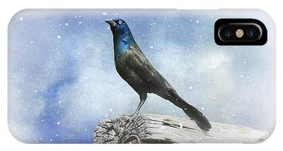 First Snow And Common Grackle IPhone Case