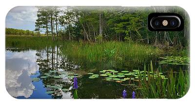 Florida Wetlands Reflections IPhone Case