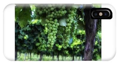 Vineyard Phone Cases
