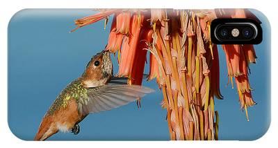 Allens Hummingbird Phone Cases