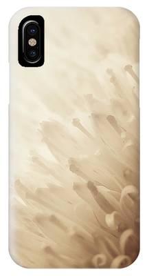 Gerbera Sepia IPhone Case