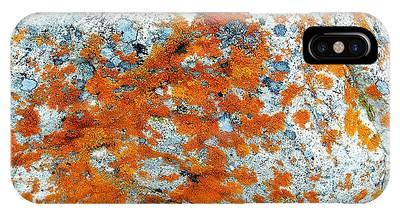 Golden Lichen IPhone Case