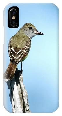 Pelican Island National Wildlife Refuge Phone Cases