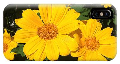 IPhone Case featuring the photograph Happy Yellow by LeeAnn Kendall