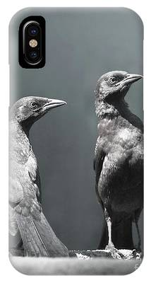 Blackbird IPhone Cases
