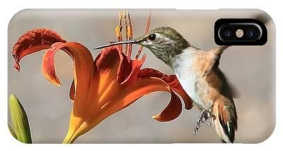 Hummingbird Whisper  IPhone Case