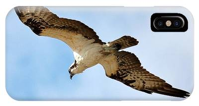 Hunter Osprey IPhone Case