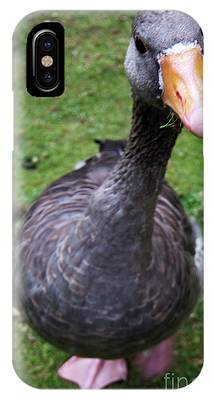 Hyde Park Goose IPhone Case