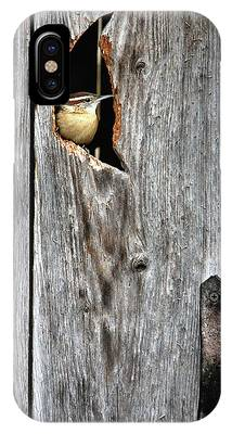 In The Outhouse Shed IPhone Case