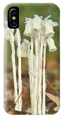 Indian Pipes IPhone Case