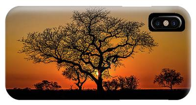 IPhone Case featuring the photograph Isimangaliso Wetland Park by Benny Marty