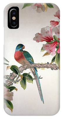 Bluejay Phone Cases