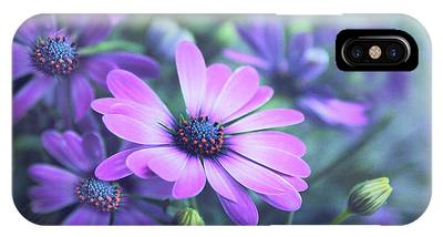 African Daisy Phone Cases