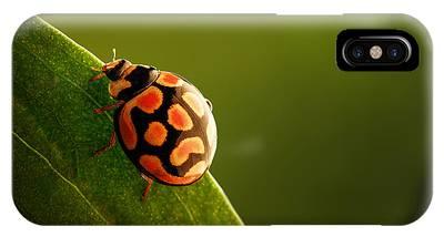 Ladybug Phone Cases