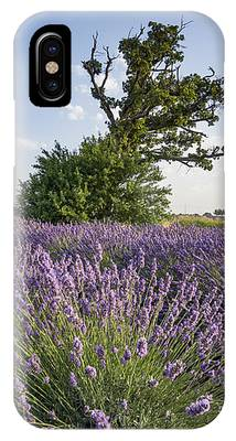 Lavender Provence  IPhone Case by Juergen Held