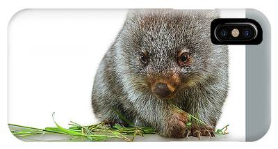 IPhone Case featuring the photograph Little Wombat by Benny Marty
