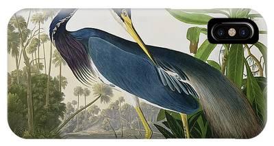 Audubon iPhone X Cases