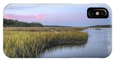 Tidal Marsh iPhone Cases
