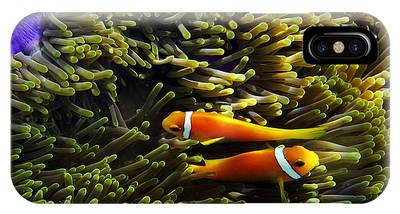 IPhone Case featuring the photograph Maledives Clown Fish by Juergen Held
