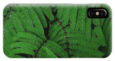 Maui Forest IPhone Case