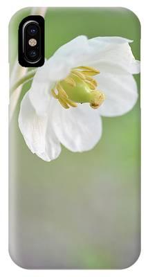 Mayapple Flower IPhone Case