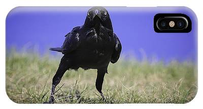 IPhone Case featuring the photograph Menacing Crow by Chris Cousins