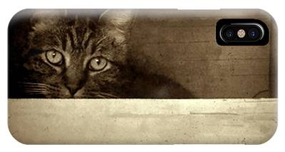 IPhone Case featuring the photograph Mollie In A Box by Patricia Strand