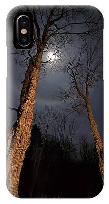 Maple Tree Phone Cases