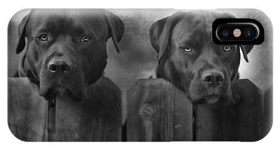 Labrador Phone Cases
