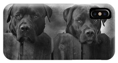Labrador Retriever Phone Cases