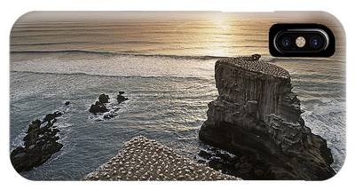 IPhone Case featuring the photograph new zealand gannet colony at muriwai beach ,gannet fly from Muri by Juergen Held