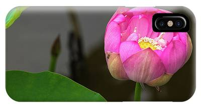 IPhone Case featuring the photograph Opening Lotus Lily by Dennis Dame
