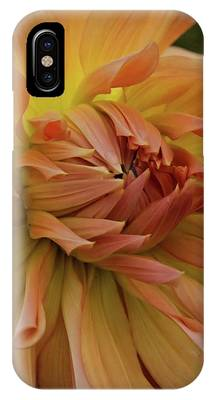 Orange Glow IPhone Case by Patricia Strand