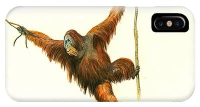 Orangutan Phone Cases