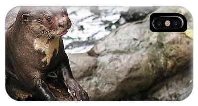 Otter Surprise IPhone Case