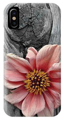 Pale Pink Flower On Wood IPhone Case by Patricia Strand