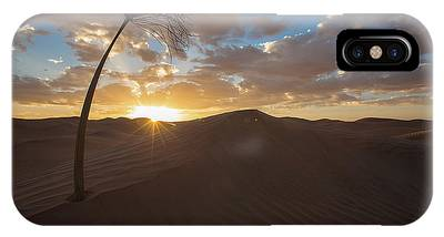Palm On Dune IPhone Case
