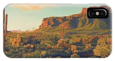 Desert Sunset IPhone Cases