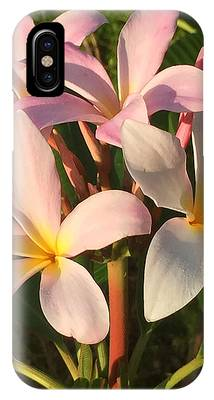 Plumeria Heaven IPhone Case by LeeAnn Kendall
