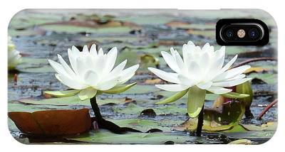 IPhone Case featuring the photograph Pond Lily Explosion by Sally Sperry