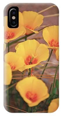 Poppies On Mount Lemmon IPhone Case
