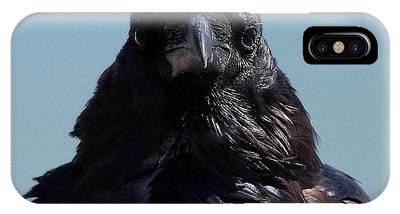 Portrait Of A Raven IPhone Case