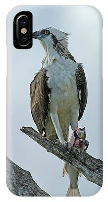 IPhone Case featuring the photograph Proud Hunter by Sally Sperry