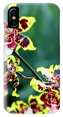 Striped Maroon And Yellow Orchid IPhone Case