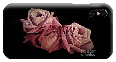 IPhone Case featuring the photograph Renaissance Roses by Patricia Strand