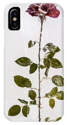 Rose Frozen Inside Ice IPhone Case