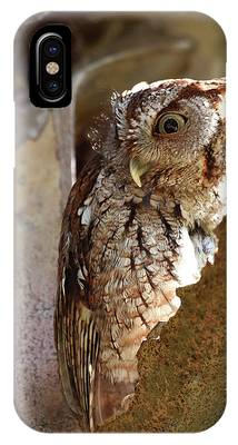 IPhone Case featuring the pyrography Screech Owl On The Lookout by Sally Sperry