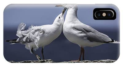 IPhone Case featuring the photograph Seagulls by Chris Cousins